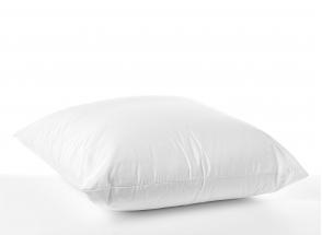 Oreiller confort 60x60cm ANDY Coton Bio Nateo Concept - 3